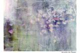 Brume-de-fleurs5872 web